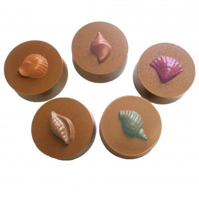 sea-shells-samples-chocolate-mold