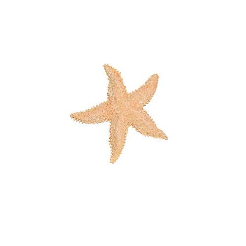 starfish-silicone-mold-2